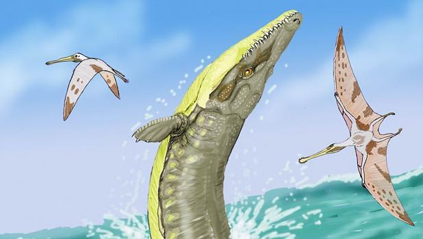 Crocodiles sailed in the sea