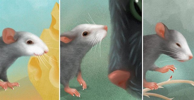 Mice have emotional facial expressions. Isn't it amazing?
