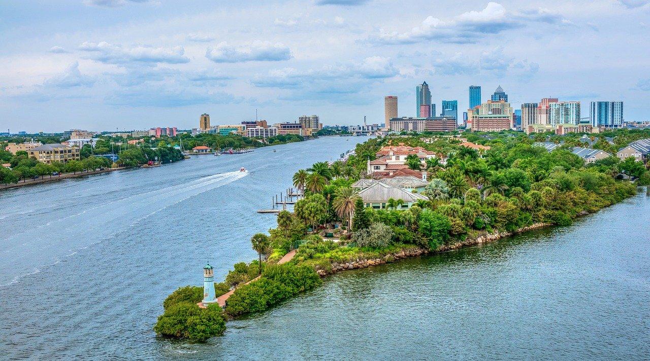 Urban trees benefit cities