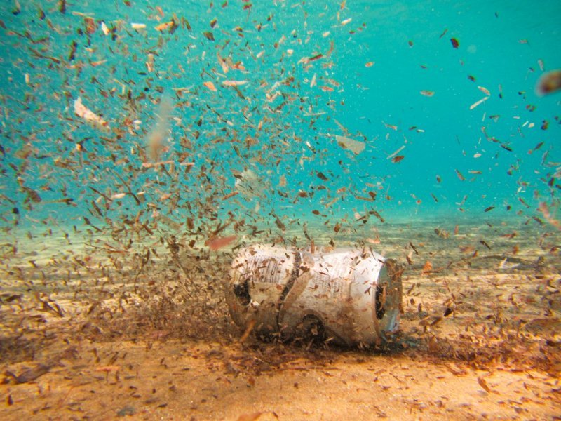 Microplastics are a threat to marine ecosystems.