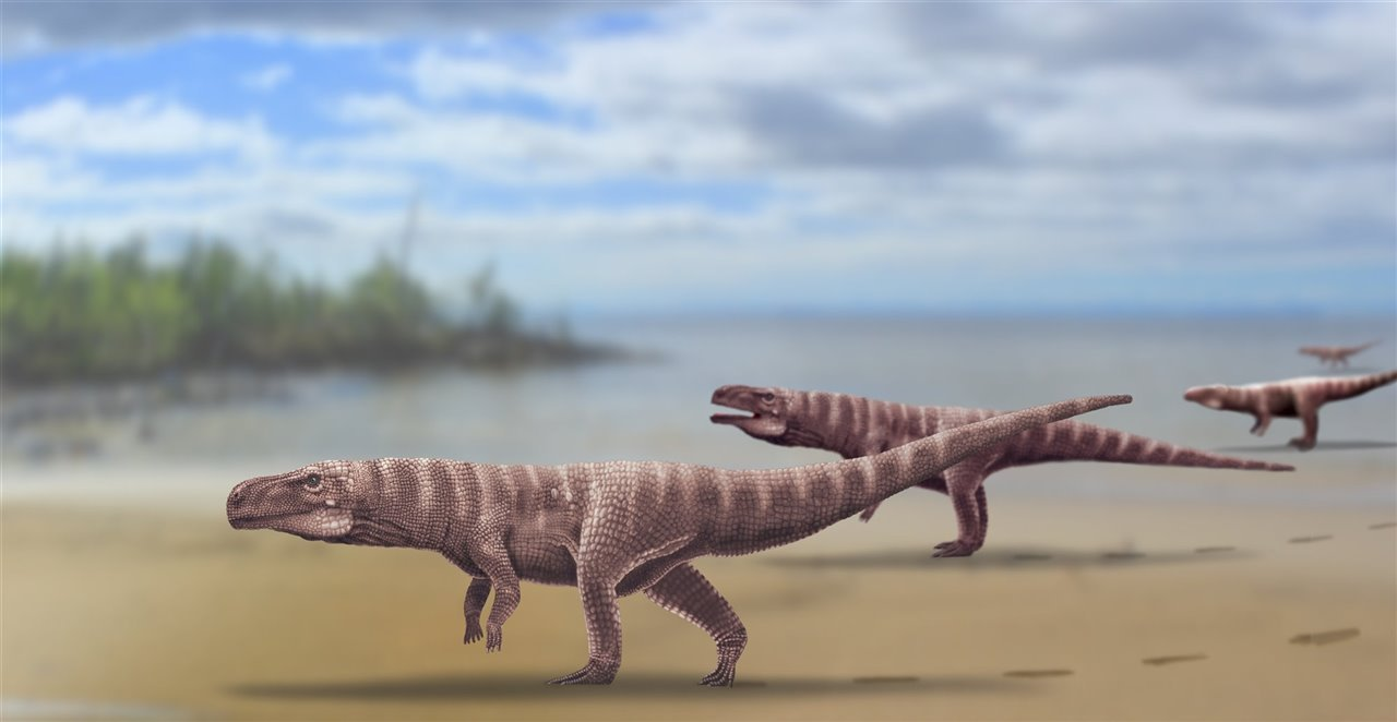 Did some crocodiles walk on two legs in the past?