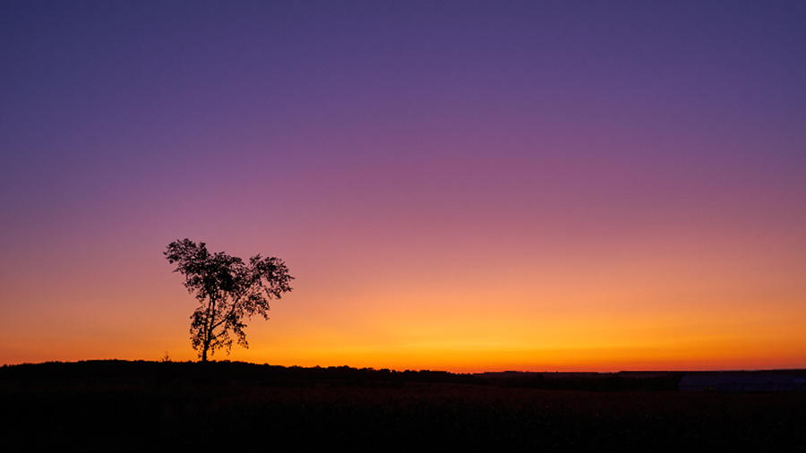 The same phenomenon explains why sunsets sometimes turn purple.