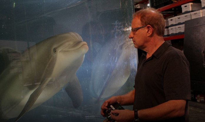 The end of trapped dolphins could be closer thanks to a highly realistic, advanced robot.