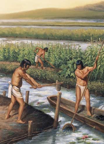 The Maya culture developed an important water management technology.