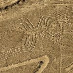The geoglyph of a cat discovered in Nasca