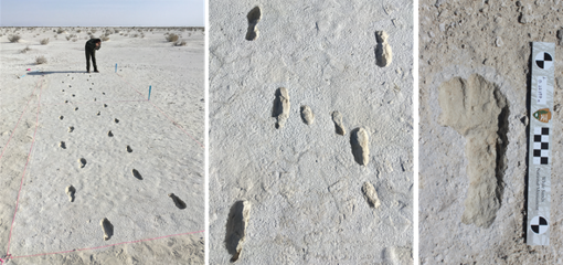 Traces from 13,000 years ago