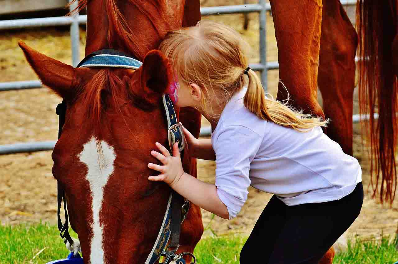 Children with ASD and horses