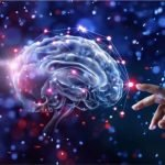 The brain is similar to the universe