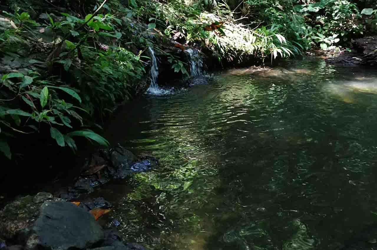 natural lagoon in the Darién Gap