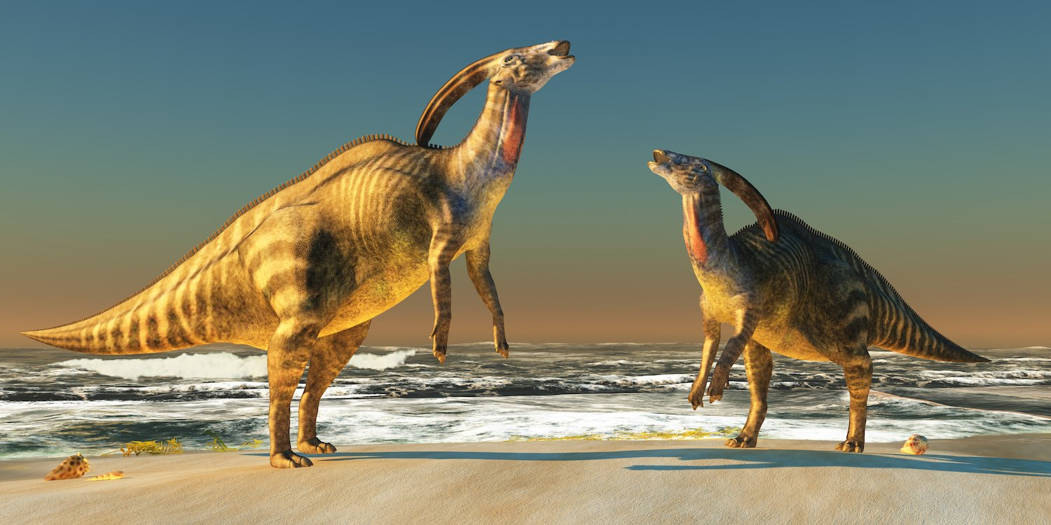 The dinosaurs that crossed the sea. Photogenic