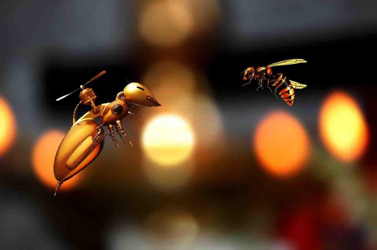 artificial bees