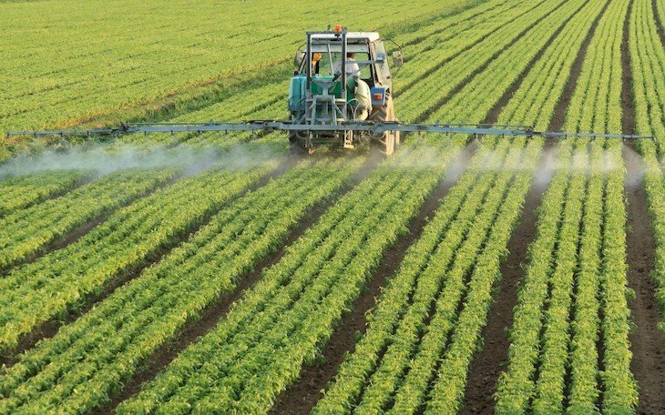 This environmentally friendly technology, never better named, would avoid the use of chemicals in the crops.