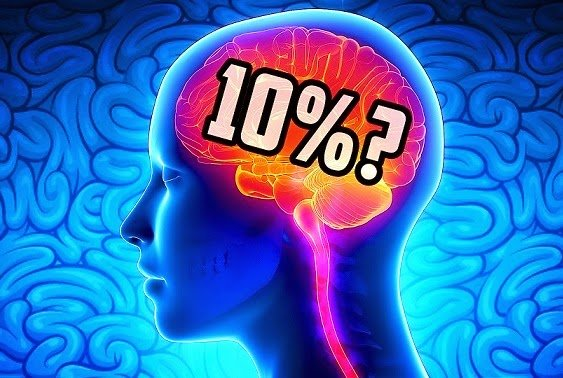Is it true that we only use 10% of the brain?