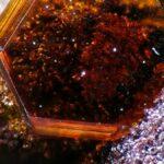 Mars mineral found in Antarctica