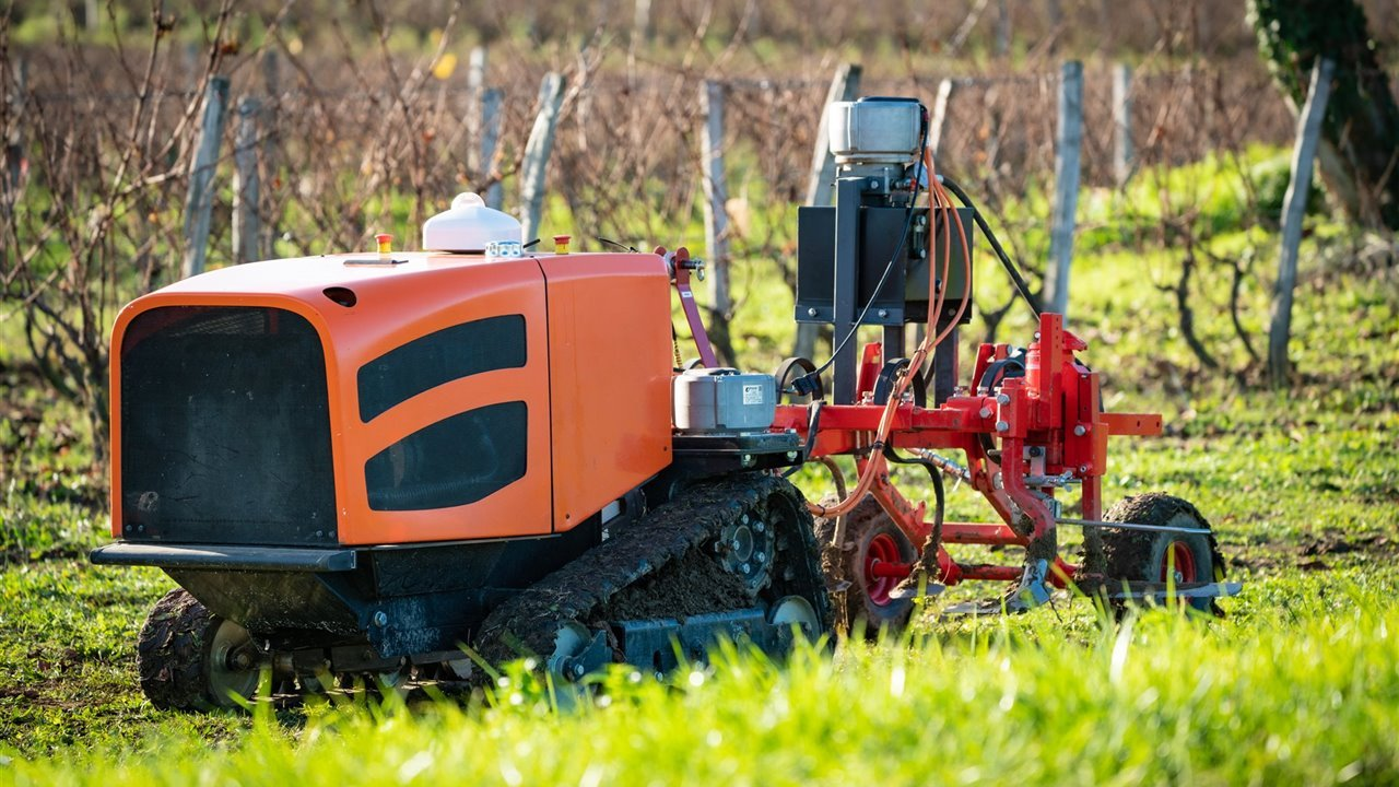 The laser robot that replaces the pesticides is called Welaser.