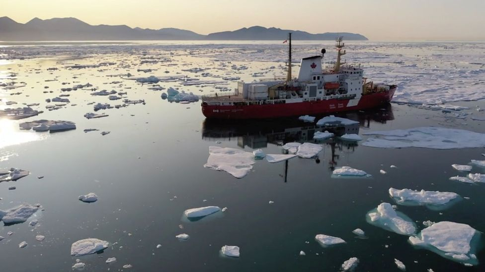 The researchers went on more than 40 expeditions to explore the bottom of the Atlantic.