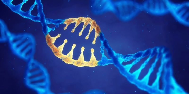This is how life could have originated on earth, hand in hand with RNA and DNA at the same time.