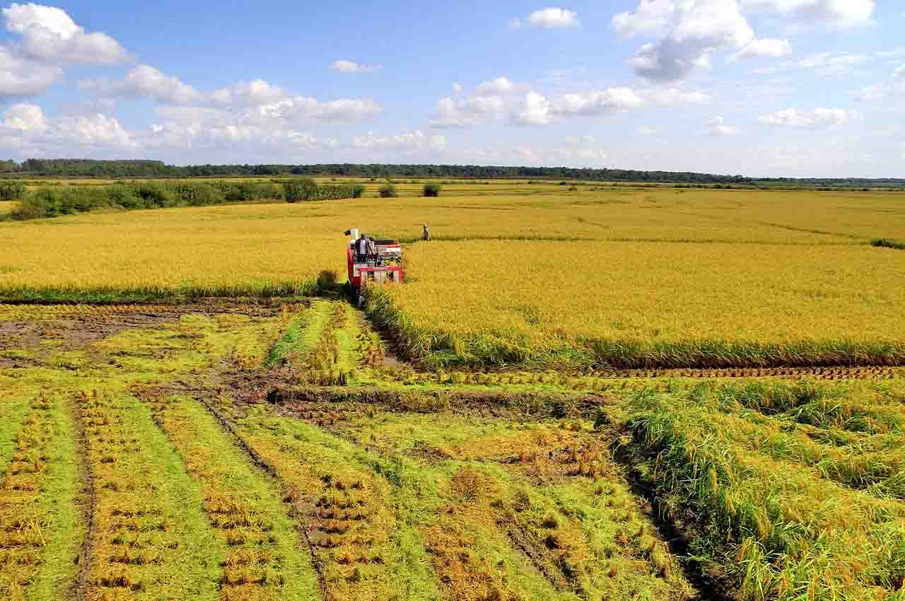 Sow clouds to benefit agriculture