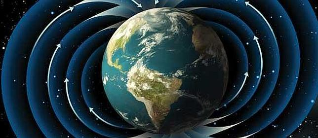 The effects of a magnetic pole reversal on the earth can be traced using old trees.