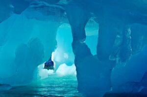Criaturas desconocidas 900 metros bajo el hielo impresionan a los biólogos.