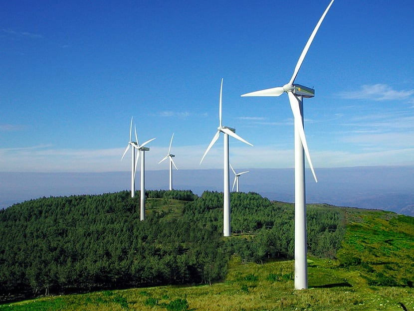Wind energy is growing steadily in the world supply.