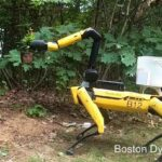 You can buy Spot the Robot Dog and it will help you with household chores or in your company