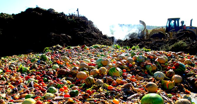 One fifth of the world's food is wasted.