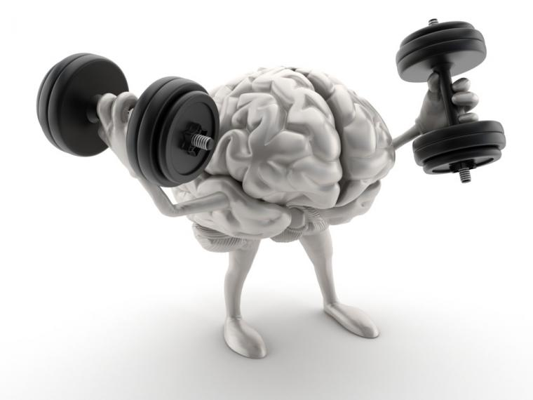 According to a recent study, the brain ages with anabolic steroids.