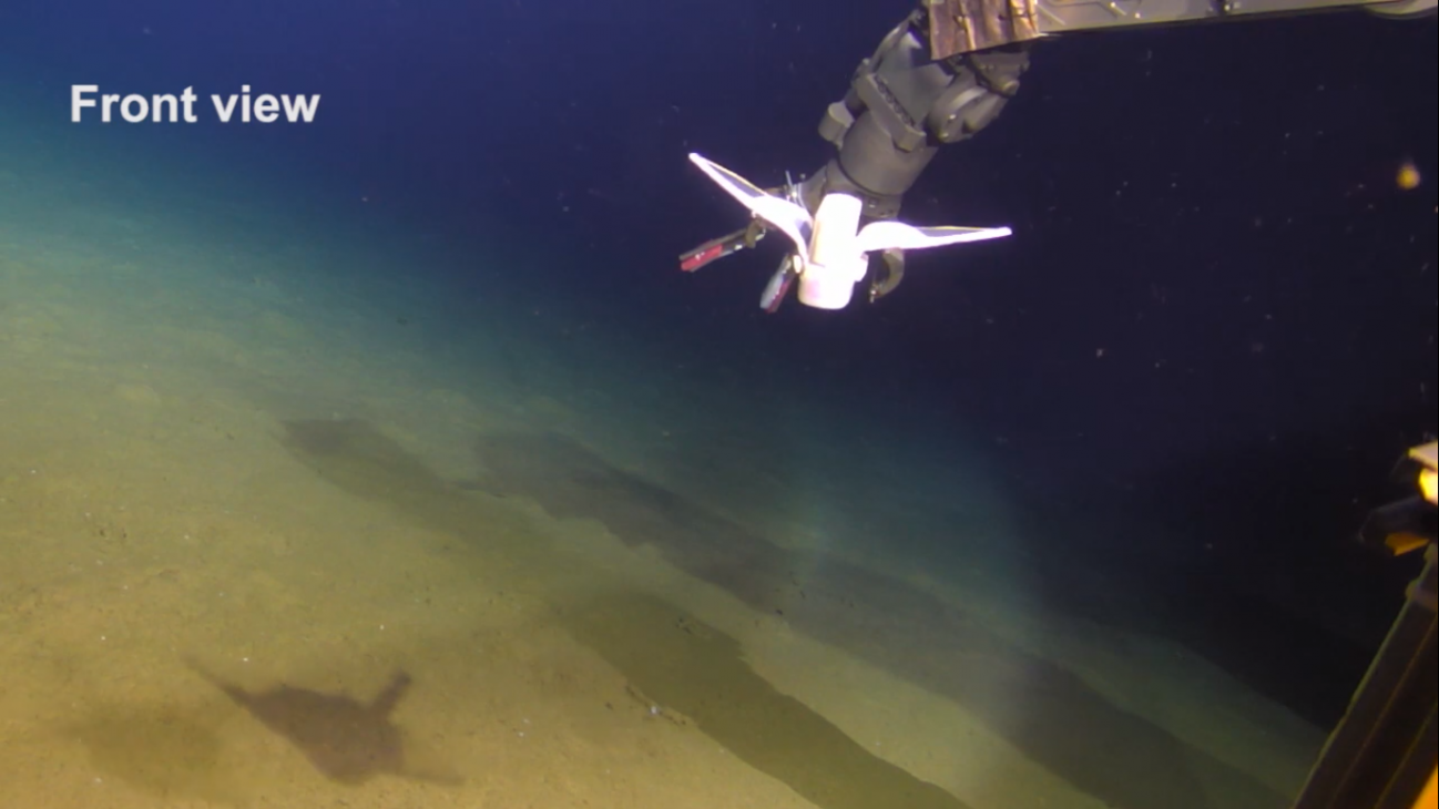 The robot fish in the Mariana Trench managed to swim smoothly on the sea floor.
