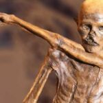 The strange case of Ötzi's mummy