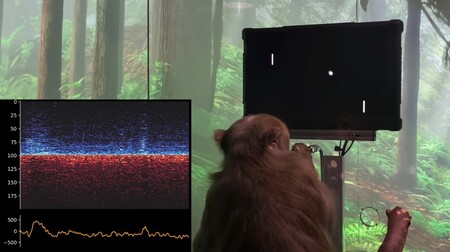 A monkey plays pong with its mind.  The future is just around the corner.