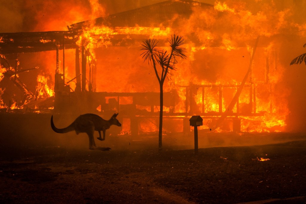 The Australian fires heated the planet by up to 2 degrees Celsius for several months.