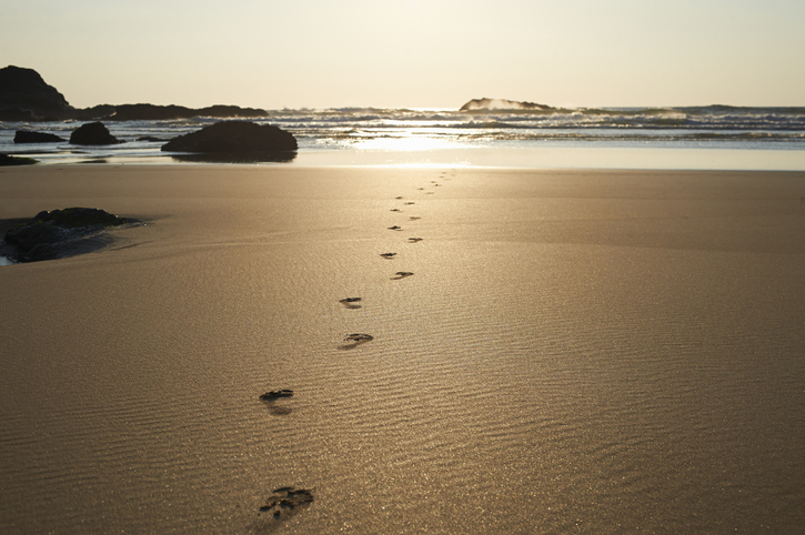 The children walked in the sand without realizing that their footprints would last 100,000 years.