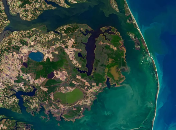 The progress of the spirit forests can be seen from space.