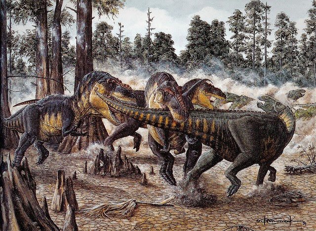Tyrannosaurs moved in herds according to increasing evidence.