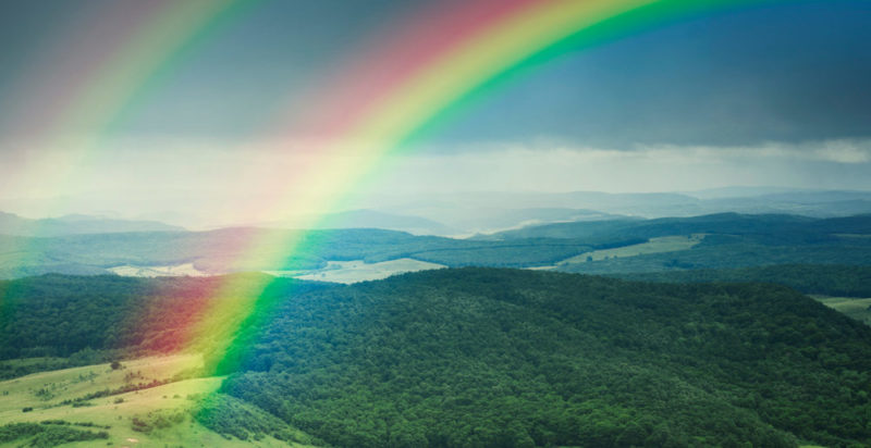 World Rainbow Day is celebrated every April 3rd.