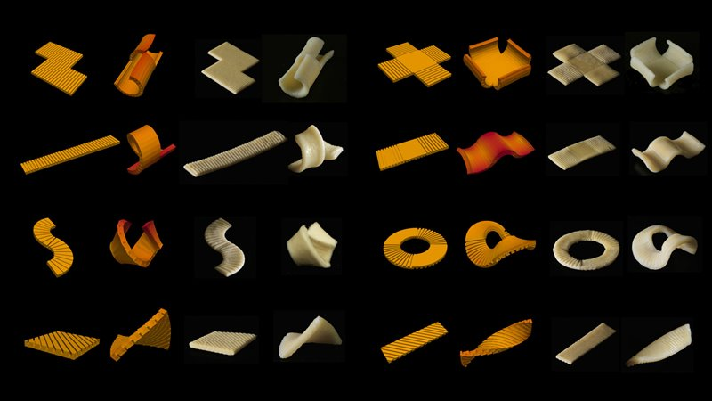This is perhaps an example of the pasta of the future.