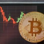 Why Bitcoin and the rest of the cryptocurrencies have gone down