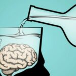 Drinking alcohol can make the brain shrink