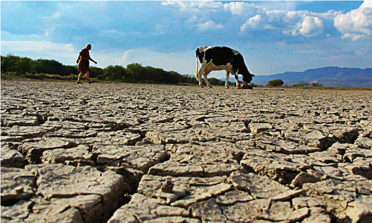 Could Mexico do without rain for decades?