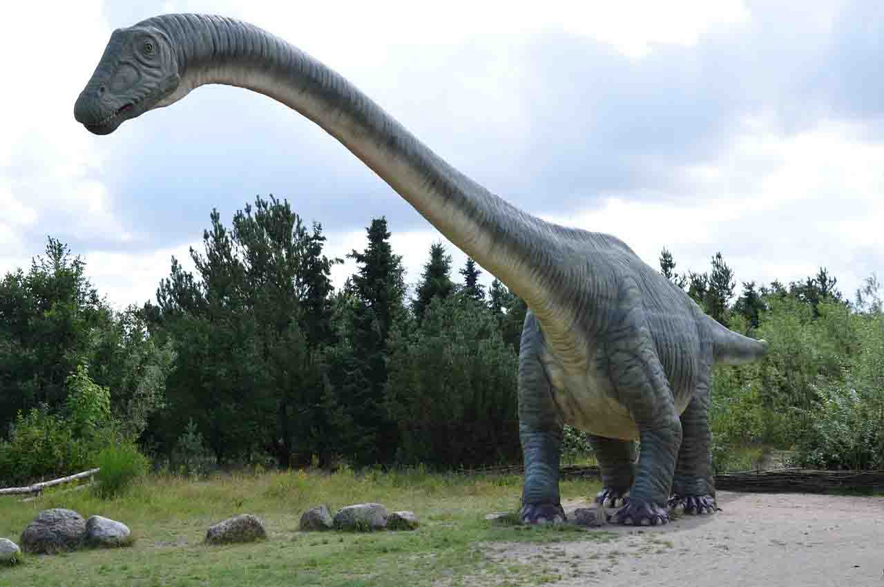 new types of dinosaurs
