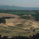 You can find valuable fossils in the landfill of Catalonia