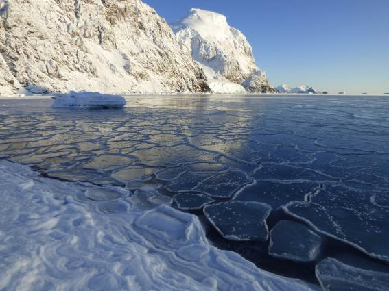 The record for the highest temperature in Antarctica warns of changes to come.