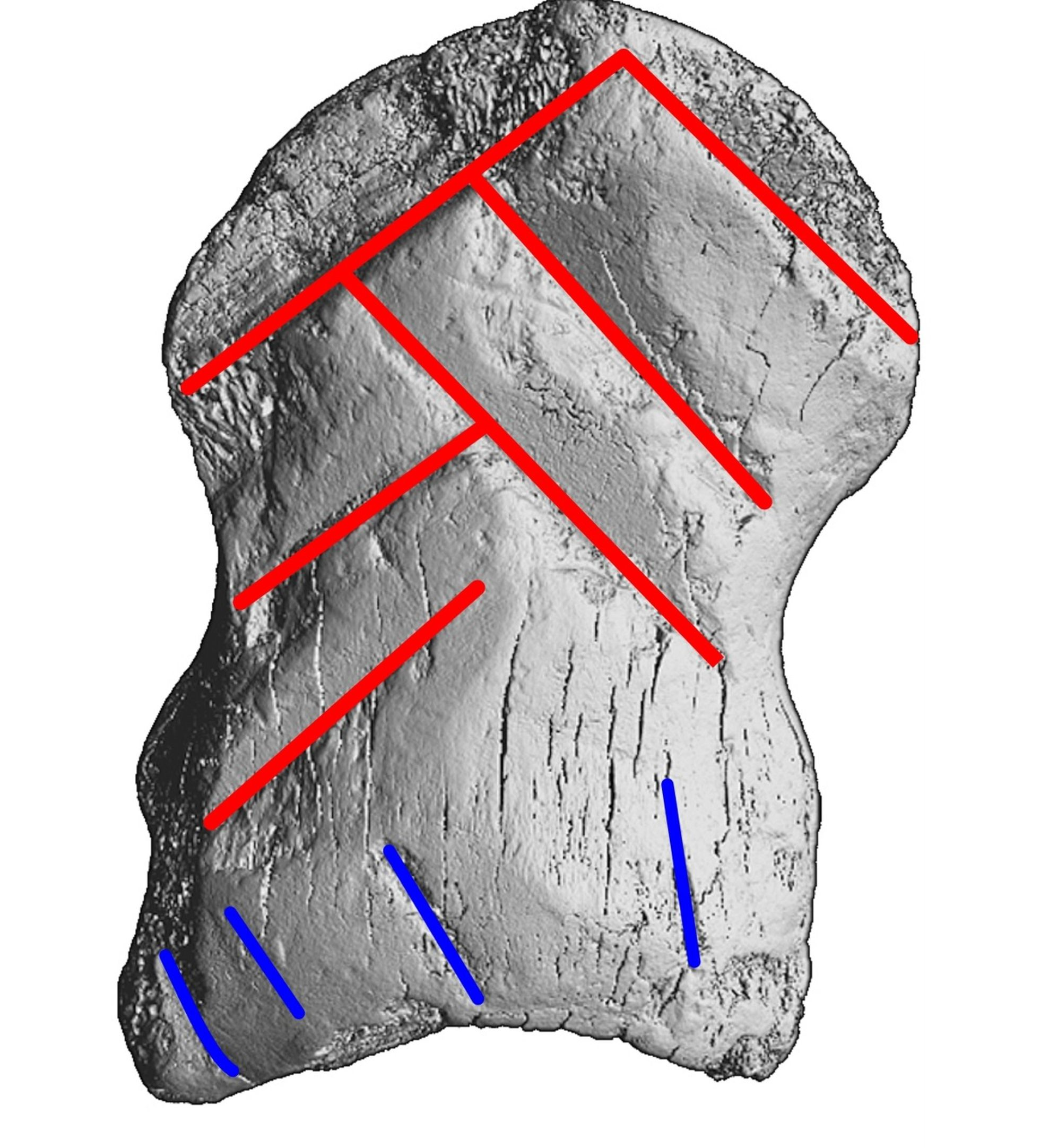 This geometric pattern was probably understood as a message by the Neanderthals.