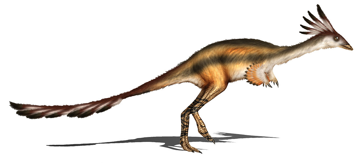 The dinosaurs that ate ants turned into birds.