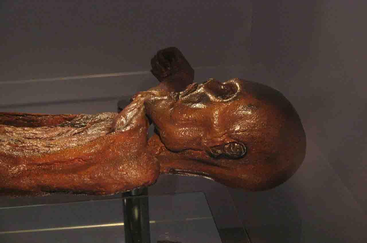 momias de la cultura Chinchorro