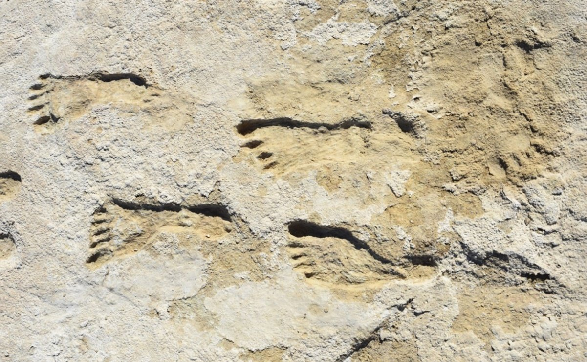 23,000-year-old human footprints in the Americas
