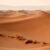 Would the Sahara desert full of solar panels be advantageous or problematic?