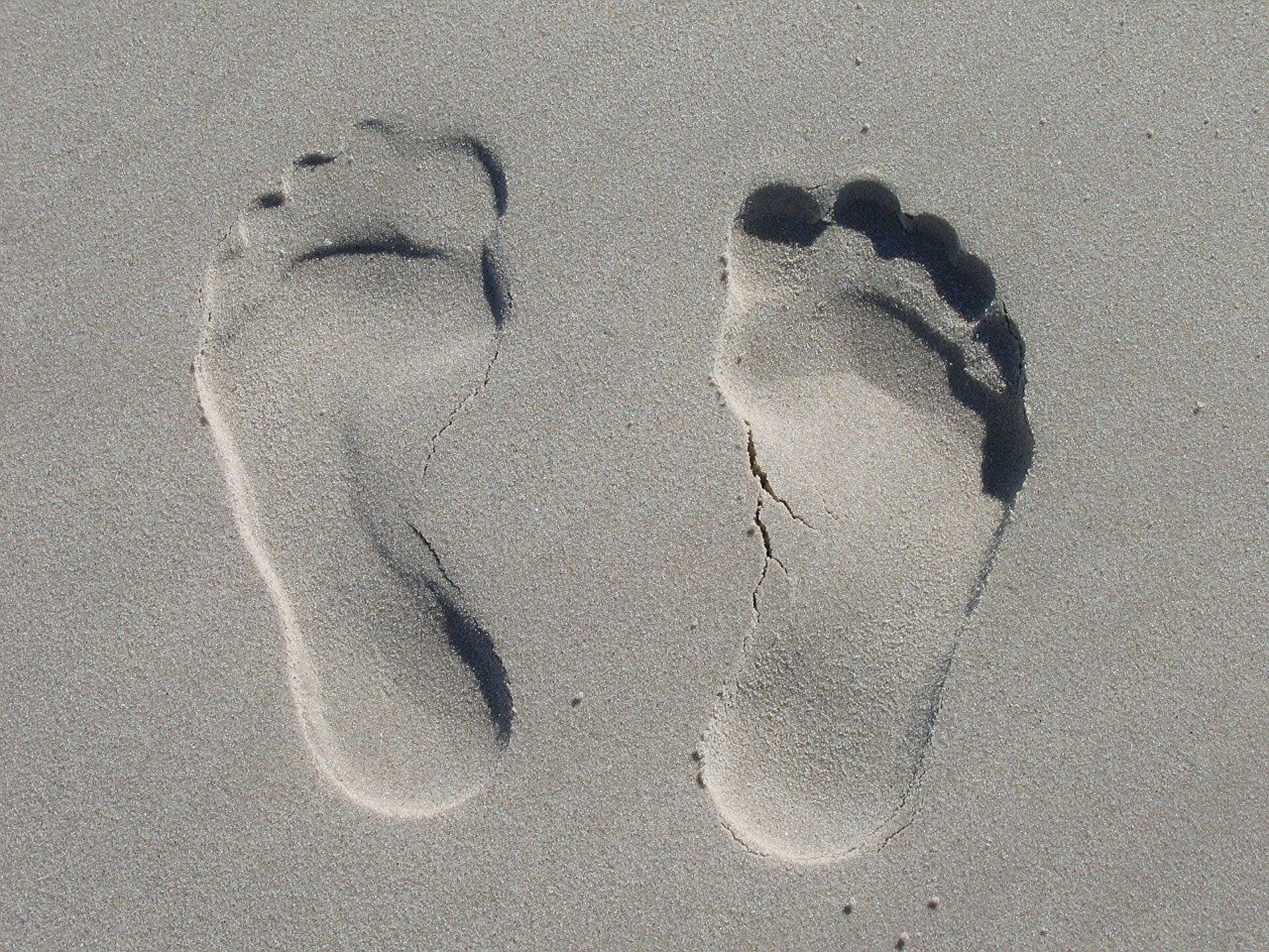 The oldest pre-human footprints